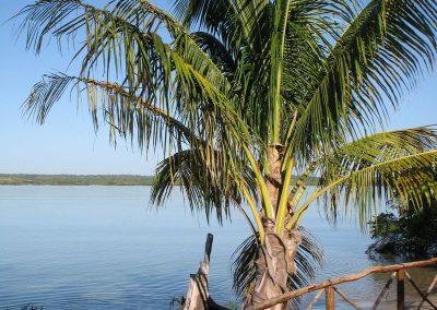 rb-mozambik2009_11